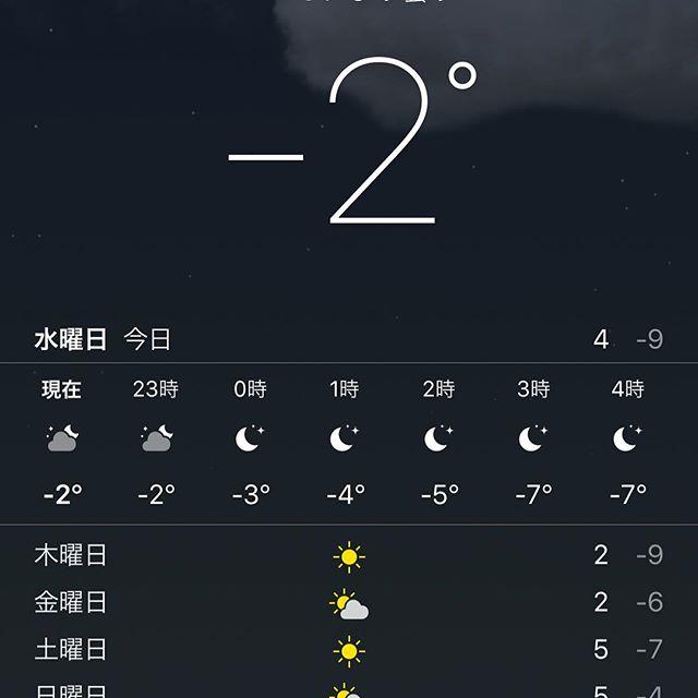 #寒い 。。。というか毎度思うけど関東の寒さって #痛い 。。。 #大寒波 #寒波 #シロクマ でるぞ。。。