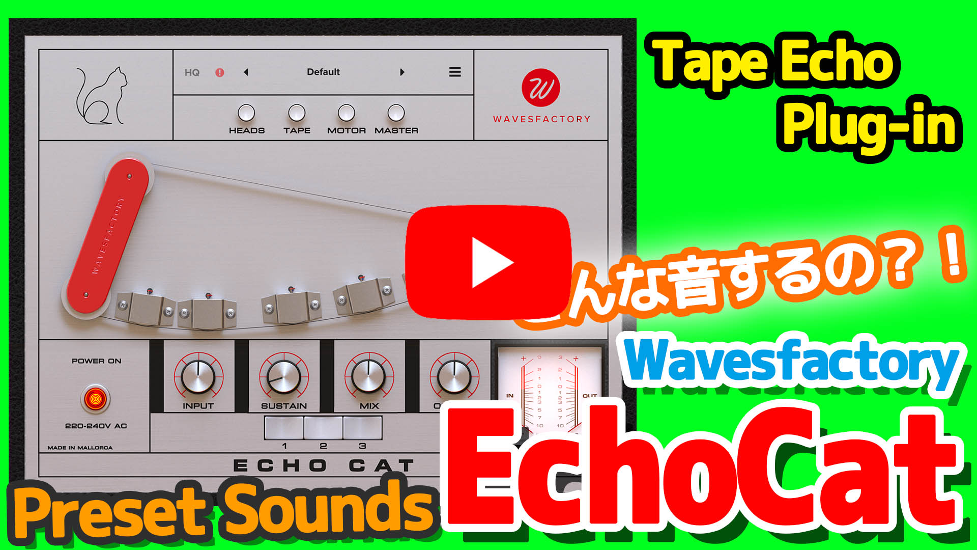 Wavesfactory Echo Cat Preset Sounds - YouTubeボタン付き